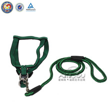 two hooks dog leash & dog collar gps & designer dog collars sexi dog