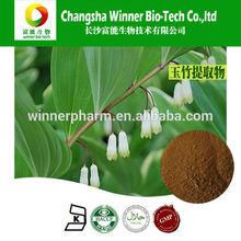 Polygonatum odoratum extract / radix polygonati officinalis /Fragrant solomonseal