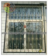 beautiful window, wrought iron trellis, protrcting