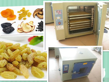 celery & beef& pork dehydrating machine/ fruit oven made in china