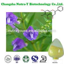 radix scutellariae extract/radix scutellariae/21967419/Baicalein 98%