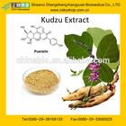 Super Pueraria Mirifica Extract With 40% Pueraria Flavones