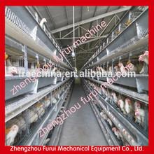 Için otomatik sistem tavuk katmanı kafes/tavuk katmanı kafesi fiyat