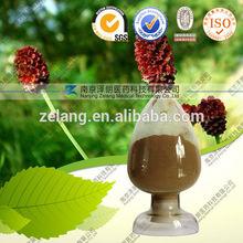 food supplement Sanguisorba Officinalis Extract Saponins 20%