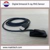USB Digital Intraoral Sensor