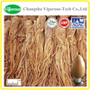 top quality Dong Quai Extract / 100% natural angelica sinensis p.e. / pure natural Dong Quai Extract powder