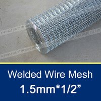"1.5mmx1/2"" Square Hole Chicken Wire Mesh"