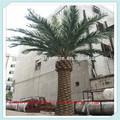 Lf092237 decoración de alta calidad artificial de árboles de palma/artificial grandes fecha palm tree/artificial canarias los árboles de palma