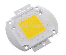 1 x 100W White LED Lamp Chip 5500-6000K Bright Light Bulb High Power Bead 8500-900LM