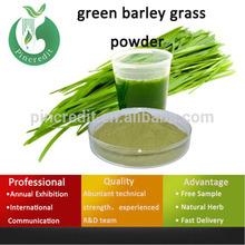 ground young barley grass powder/Barley Powder/green barley grass powder
