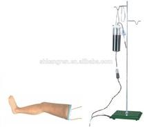 Advanced Intravenous Transfusion Leg Model