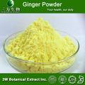 Alimentos y bebidas ingredientes - instantánea de jengibre en polvo, 100% soluble en agua de jengibre en polvo