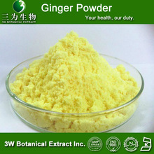 Food & Beverages ingredients- instant Ginger powder,100% water soluble Ginger powder