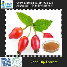 Most Popular VC 5% Natural Rose Hip Extract