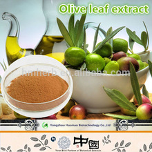 Alibaba China nutritional and medicinal uses Olive leaf extract / Oleuropein