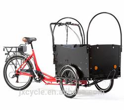 3 Wheel CE approved Brushless motor moped cargo bike