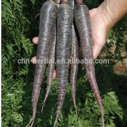 Herbal medicine Radish extract/High Radish extract powder/Best buy Radish powder