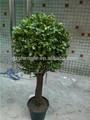 artificial planta buxus con maceta de flores