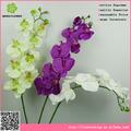 Pas cher fleurs artificielles orchidée papillon fleur prix