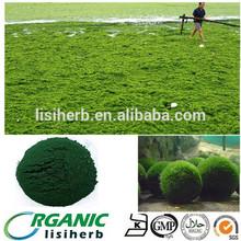 100% Natural Organic Chlorella /chlorella / chlorella powder