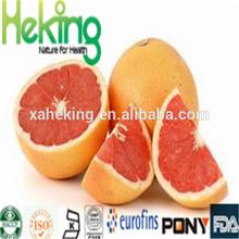 Top Quality herbal medicine Yohimbe Extract grapefruit seed extract