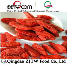 Goji Berries Import goji dried fruit