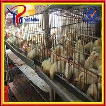 galvanized wire mesh small chicken coop design