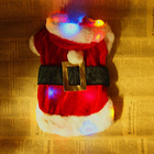 Fancy LED Light Up Party Dog Clothes, Wholesale Pet Supplies China, Battery Changeable!