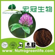 nerve protection organic Red clover Extract Isoflavones8% 20% 40% Trifolium Pratente L
