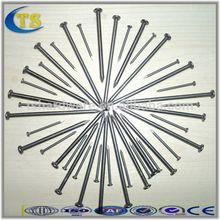Taishun Factory High Quality Iron Staples Nails-TS190