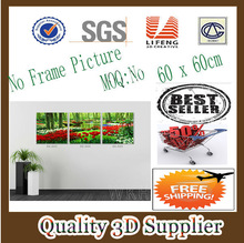 New Material PET 1.5mm No Frame Picture Simple flower Framed wall hanging 3d pictures natural