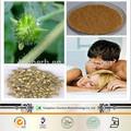 2014 novos produtos tribulus extrato de ervas estimulantes sexuais