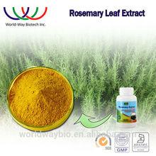 Rosemary leaf extract China supplier wholesale good antioxidative activity rosemary extract