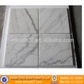 Boa qualidade Guangxi mármore branco