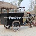 bici elettrica a tre ruote