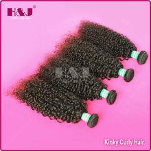 HJ 5A grade cheap wholesale virgin kinky curly hair brazilian