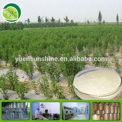 Natural Stevia Extract,stevioside,steviol glycosides