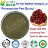 ISO certificated pure natural pomegranate peel extract