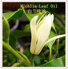 Bulk Michelia alba leaf oil wholesale