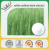 white willow bark extract free sample made in China herb medicine anti-rheumatism salix alba extract salicin 15%