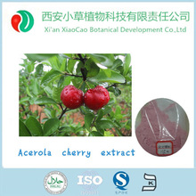 Best natural factory supply acerola cherry powder/acerola extract powder Vitamin C 17%,25%