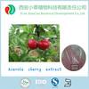 Best natural factory supply acerola cherry powder/acerola extract powder Vitamin C 17%,25%