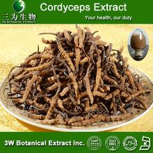 3W Factory Sale - Cordyceps Mushroom Extract,Cordyceps Mycelium Extract, Cordyceps Sinensis Mycelium Extract