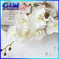 свадьбы декоративные цветы мини-белого орхидея искусственный фаленопсис