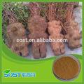 A base de hierbas de la medicina del tubérculo fleeceflower raíces p. E. Todos 20:1 ratio que shou wu extracto