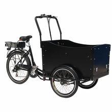 Brushless motor 3 wheel mini adult electric car