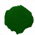 fábrica por atacado de sódio clorofila cobre
