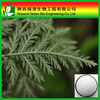 Wholesale Price Herbal Artemisia Annua Powder Artemisinin/Dihydroartemisinin