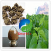 Advantage Cat 's Claw Extract for Liver Health / Pure Alkaloids 3%--5%UV
