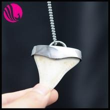dente di squalo denti di squalo collana di turchese gioielli in oro per la vendita